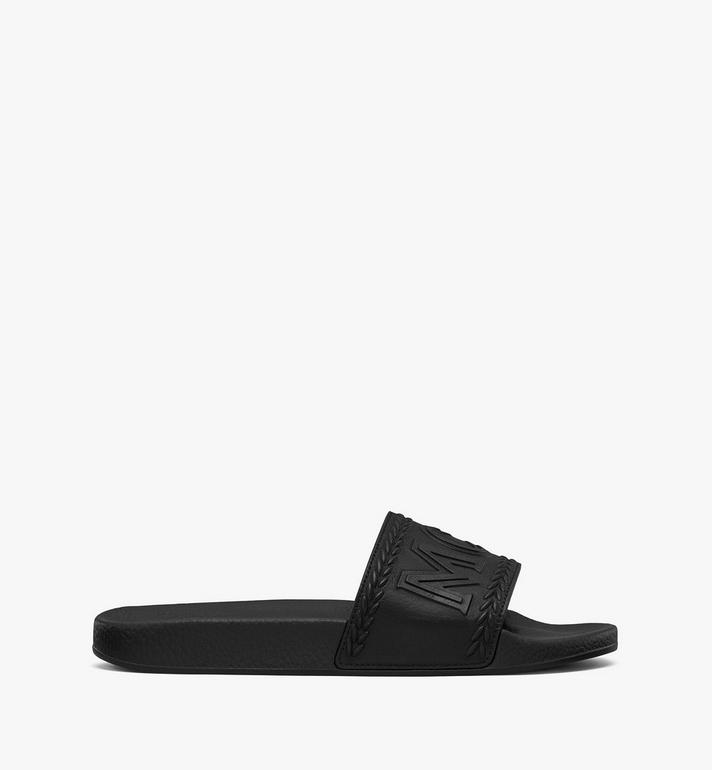 MCM SLIDES-MEXASMM21  5233 Alternate View 2