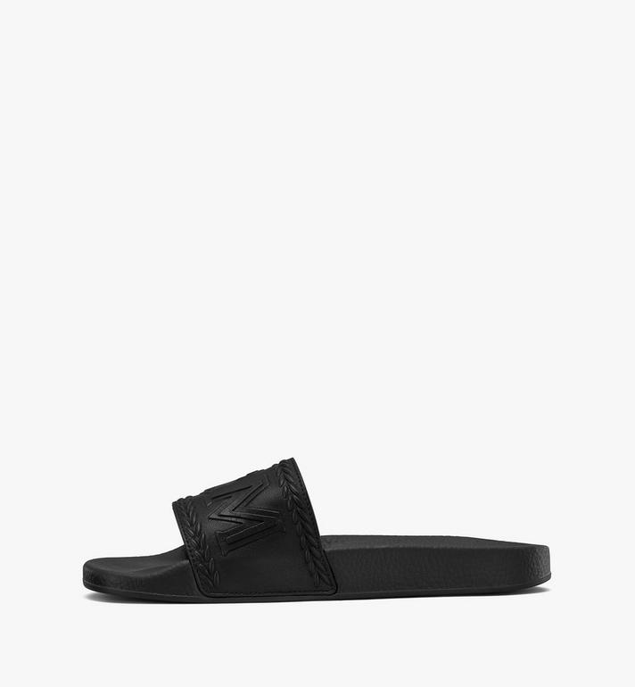 MCM SLIDES-MEXASMM21  5233 Alternate View 4