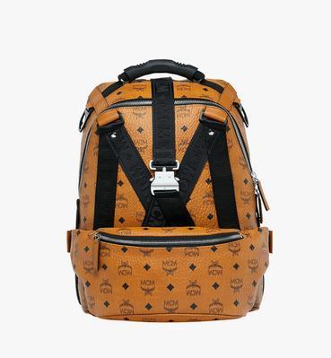 Jemison Backpack and Belt Bag in Visetos