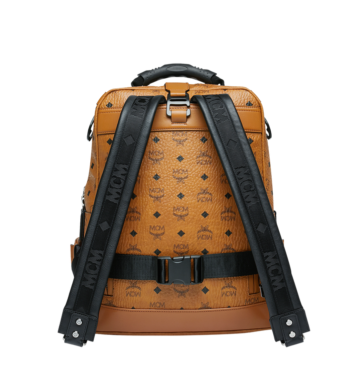 40 Cm    16 In Jemison Backpack And Belt Bag In Visetos